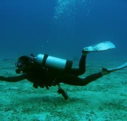 Общий сезон для подводного плавания - с ноября по май, однако на отдельных дайв-сайтах эти сроки могут быть несколько иными