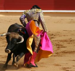 Если вы едете в Испанию с марта по октябрь у вас есть шанс попасть на корриду, но это зрелище не для всех