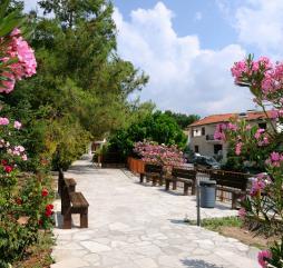 Весна на Кипре - удивительная пора