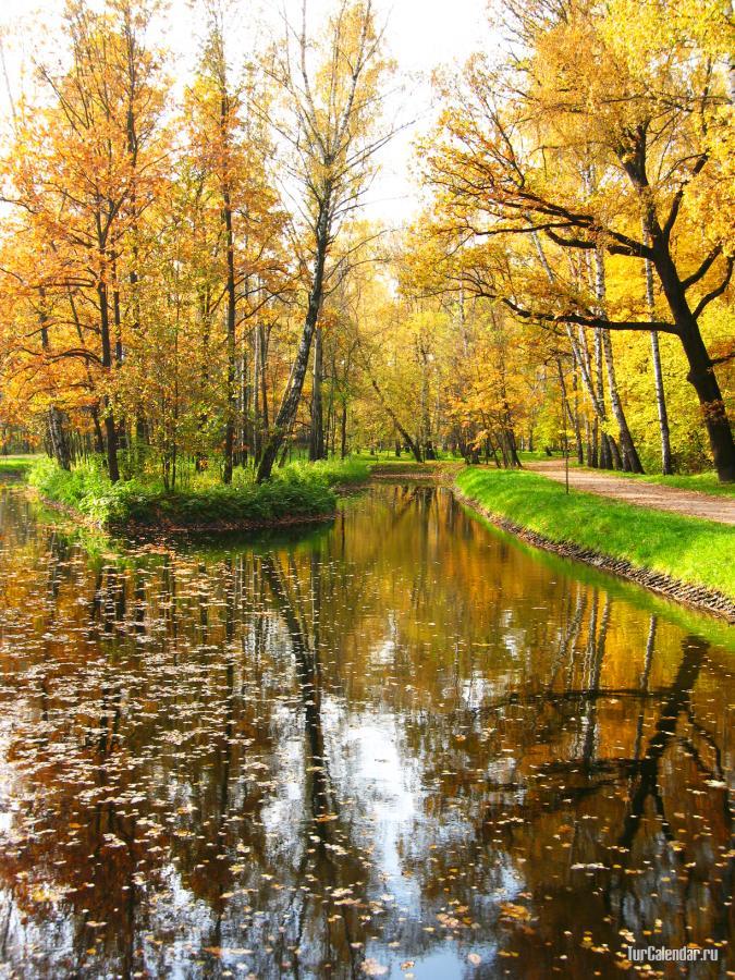 осень картинки москва