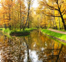 Так выглядит осень в одном из парков Москвы