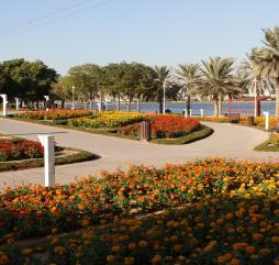 Один из парков в дубае своими цветами