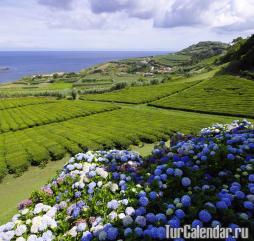 Начиная с апреля погода в Португалии начинает заметно улучшаться, становится гораздо теплее и солнечнее