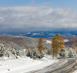 Зимы в России холодные и снежные, а на Черноморском побережье Кавказа - тёплые и влажные