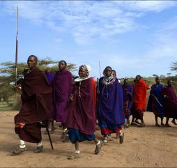 Праздников в Танзании отмечается очень много, летом и осенью устраиваются различные фестивали с расчётом на туристическую публику
