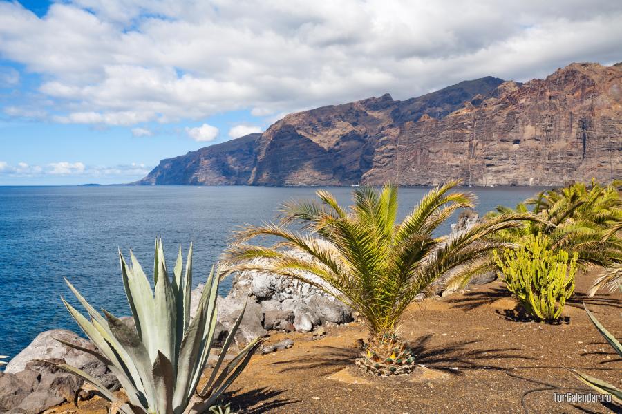 Температура в декабре на канарских островах