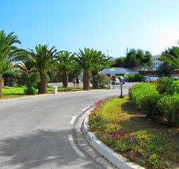 Весной в Тунисе стоит приятная тёплая погода