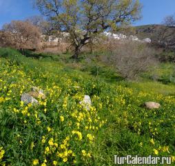 Турция весной свежа и прекрасна, к середине весны уже по летнему тепло, в мае некоторые уже начинают купаться!