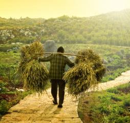 В центральных областях страны осенью случаются природные катаклизмы