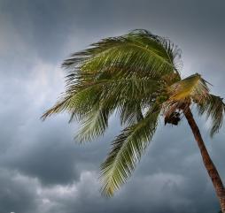 Тайфуны во Вьетнаме - это реальная угроза человеческой жизни, ''сезон'' начинается в последние дни лета